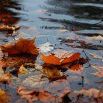 meteo autunno
